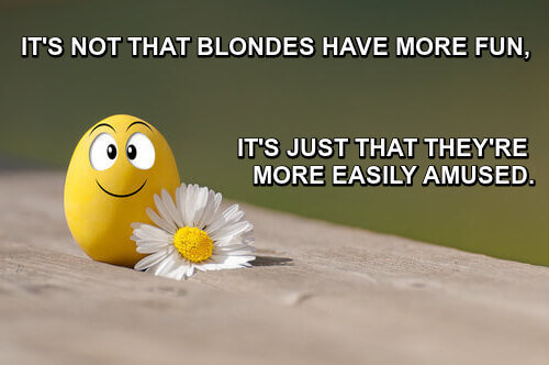 Picture of a yellow egg and a daisy, caption: it's not that blondes have more fun, it's that they're more easily amused.