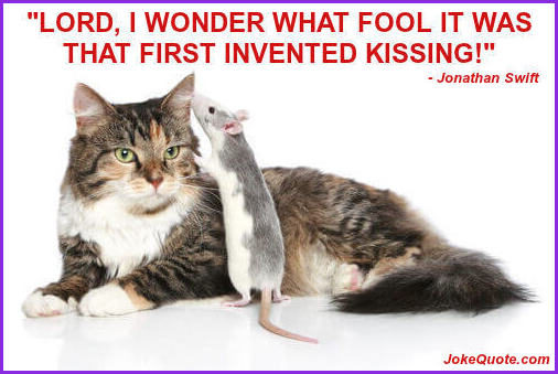 Photo: Mouse whispering in reclining cat's ear. Caption: Lord I wonder what fool it was that first invented kissing. - Jonathan Swift