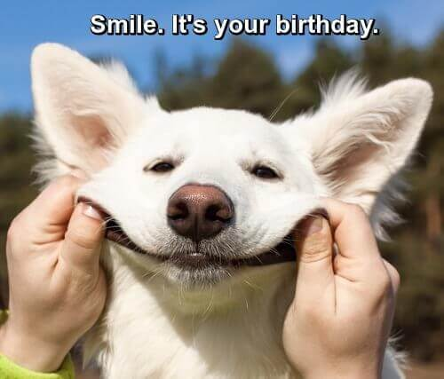 Picture of a man holding a dog's face into a smile. Caption: Smile! It's your birthday!