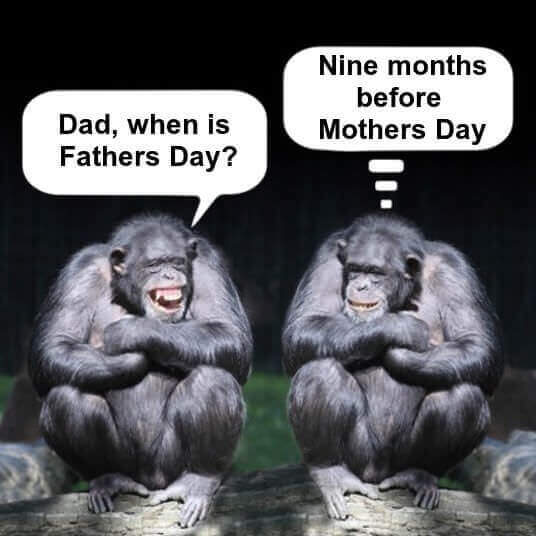 Image result for Father's Day jokes